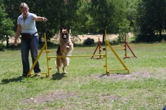 Agility Workshop 14. Juni 09